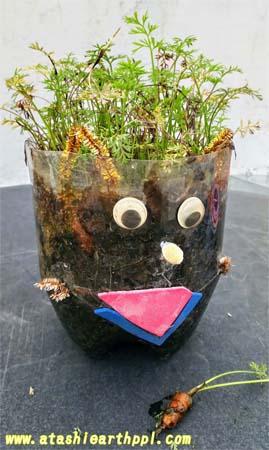 自由研究 工作 ペットボトルの鉢植え