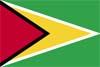 南米ガイアナ国旗