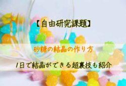 【自由研究】砂糖の結晶の作り方:1日で結晶ができる超裏技も紹介!